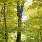 Coffin: Baum trägt Jeans